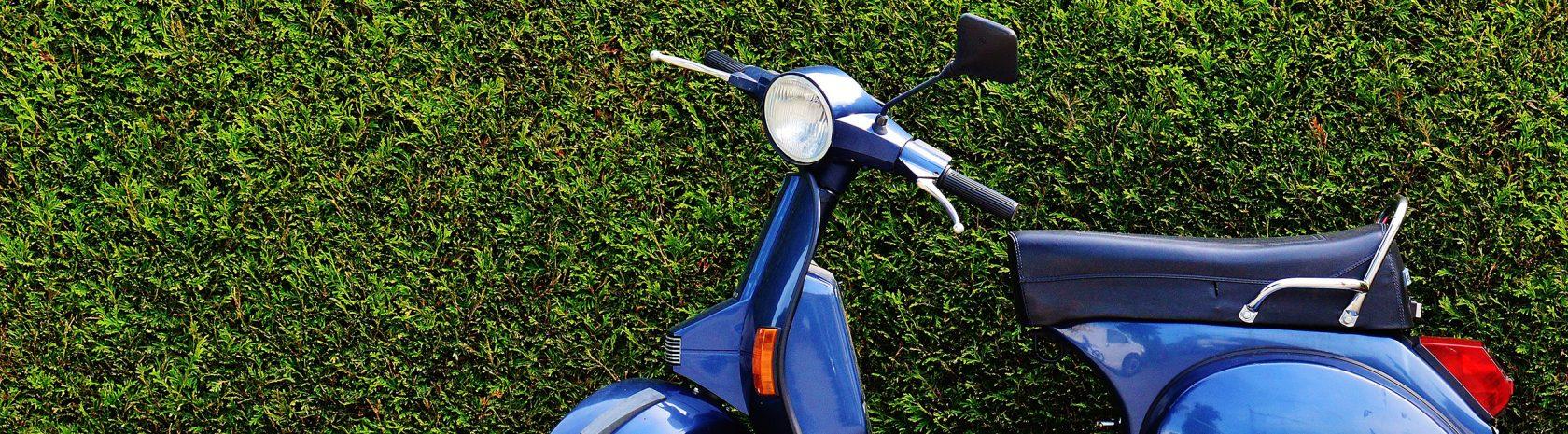 scooter gouda